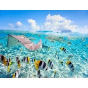Lär dig dyka 4