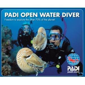 Lär dig dyka 1