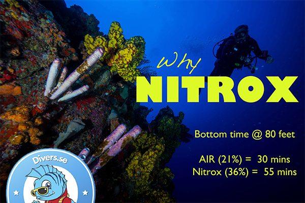 PADI Nitrox Diver Kurs